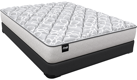 Sealy Foam mattress